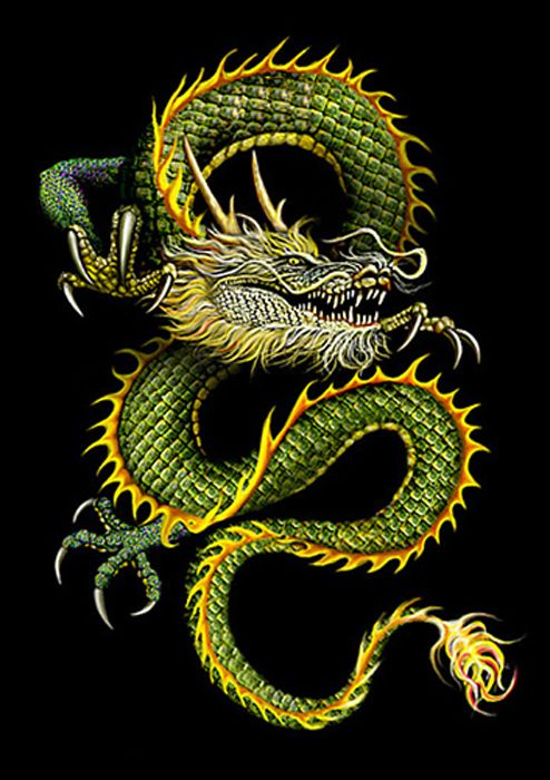 Pictures of chines drangons   Chinese Dragon Pictures for Download In Chinese Dragons at Lair2000