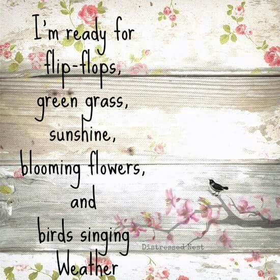 Absolutely! 1st weekend of sun and I go crazy in the garden. :)