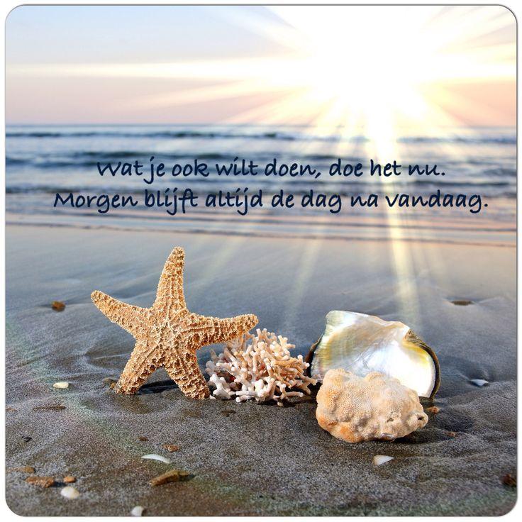 Wat je ook wilt doen, doe het nu. #Morgen blijft altijd de dag na #vandaag