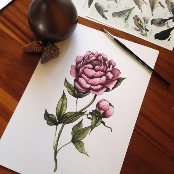 flower art floral art peony art print vintage art art