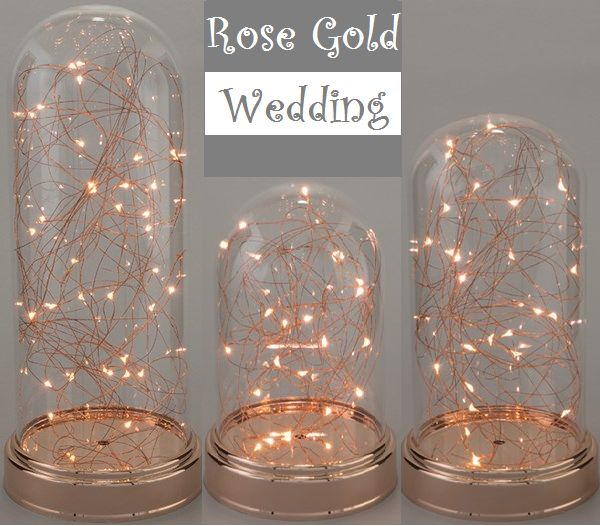Best 25 rose gold weddings ideas on pinterest rose gold theme fairy lights in clear glass cloche copper rose gold small find this pin and more on wedding decor junglespirit Choice Image