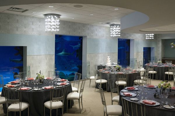 Seascape Ballroom reception at Mandalay Bay's Shark Reef Aquarium