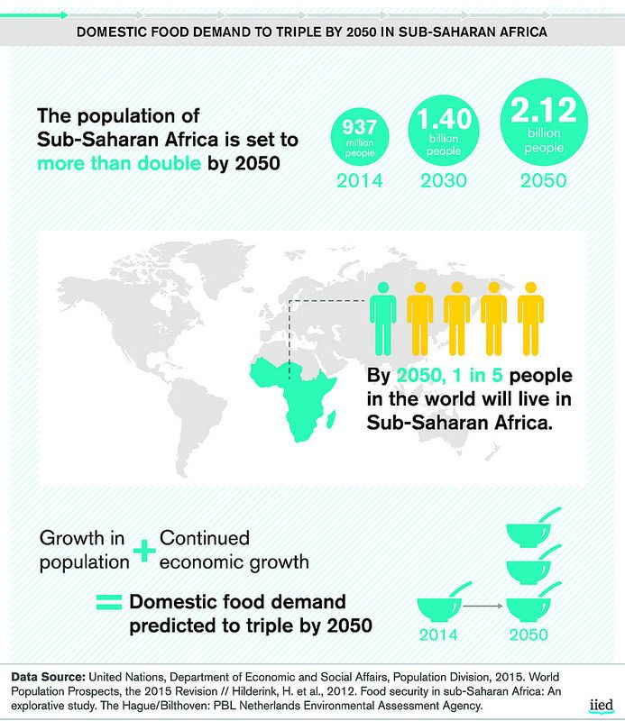 Domestic food demand to triple by 2050 in Sub-Saharan Africa | by iied.org
