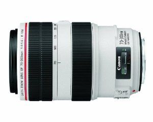 Canon EF 70-300mm f/4-5.6L IS USM UD Telephoto Zoom Lens for Canon EOS SLR Cameras  Canon $1,449.00