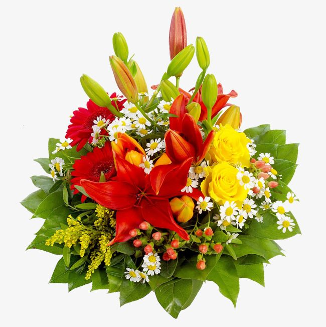 Flowers Flowers Free Matting Flower Bouquet Png Rose Flower Png Flower Bokeh