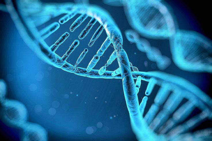 1953 - James Watson y Francis Crick: descripción de la estructura del ADN.