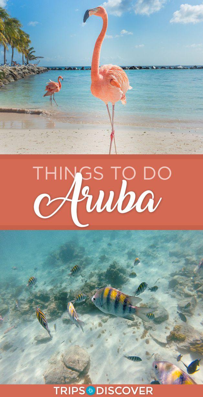 8 Best Things To Do in Aruba