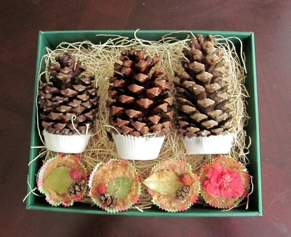 Pretty fire starters. I had the kids collect a ton of pine cones, maybe I make some good looking fire starters out of them.