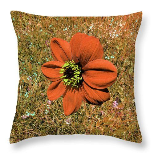 Orange Dahlia Abstract by mARTine