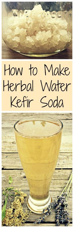 Learn all about water kefir, a probiotic drink, and how to turn it into an all natural herbal soda!