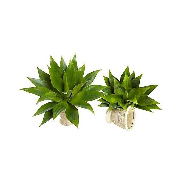 "Nearly Natural "" Agave Succulent Plant ($55) ❤ liked on Polyvore featuring home, home decor, floral decor, green, nearly natural silk flowers, nearly natural, green artificial flowers, tree home decor и green tree"
