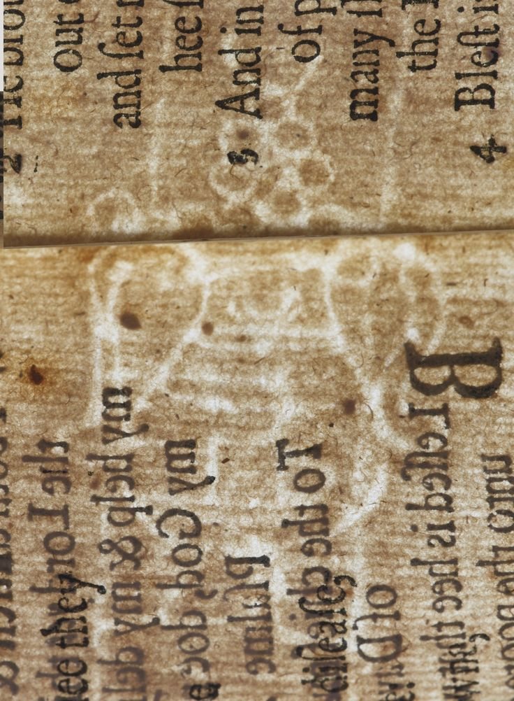 Printing the Bay Psalm Book | Sotheby's