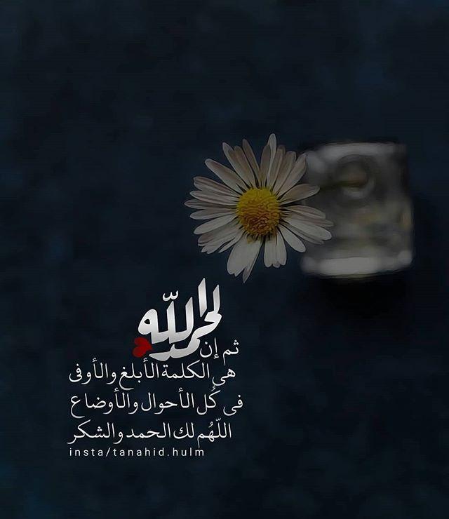 Tanahid Hulm ثم إن الحمدلله هي الكلمة الأبلغ والأوفىفي كل الأحوال والأوضاع اللهم لك الحمد والشكر مساء الخير أنشر Islam Quran Islam Arabic Quotes