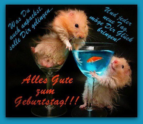 alles gute zum geburtstag  - http://www.juhuuuu.com/2013/12/30/alles-gute-zum-geburtstag-5/