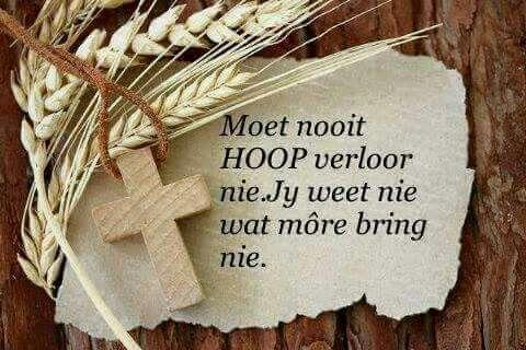 Bly hoop!