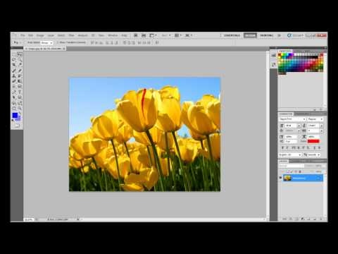 Adobe Photoshop Creating Black and White Images Tutorial