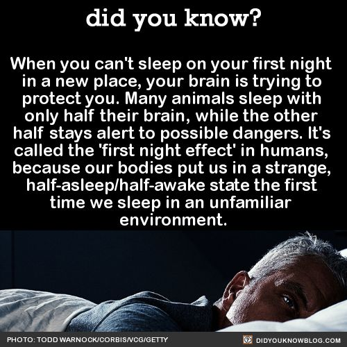 When you can't sleep on your first night  in a new place, your brain is trying to  protect you. Many animals sleep with  only half their brain, while the other  half stays alert to possible dangers. It's  called the 'first night effect' in humans,  because our bodies put us in a strange,  half-asleep/half-awake state the first  time we sleep in an unfamiliar  environment.  Source