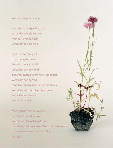 Op de post - poëziekaarten per stuk - poëziekaart met gedicht 'Voor een dag van morgen' van Hans Andreus - Plint