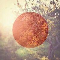 Jon Hopkins - Abandon Window by Jon Hopkins on SoundCloud