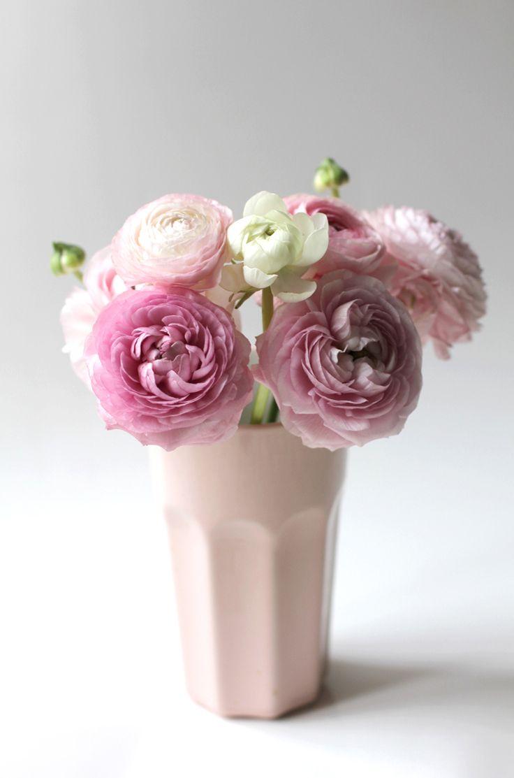 Les 25 meilleures id es concernant renoncules sur for Bouquet de fleurs 974