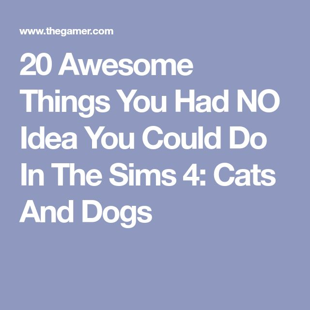 Sims Cats And Dogs Secret Tips