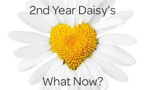 16 Ideas 2nd Year as a Daisy Girl Scout What Now? Makingfriends.com