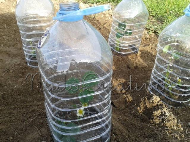 Nudocreativo diy huerta ecol gica c mo proteger tu for Bricolaje y jardin