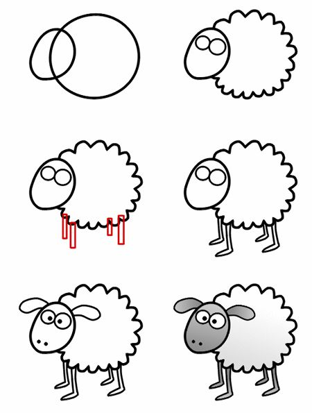 how to draw a sheep step by step for kids | How to draw a cartoon sheep step-3