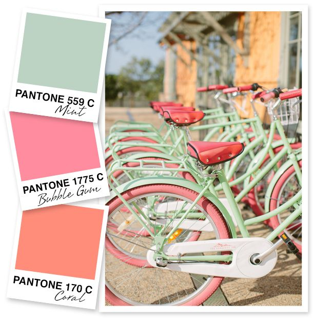 Mint, Pink and Coral Color Palette
