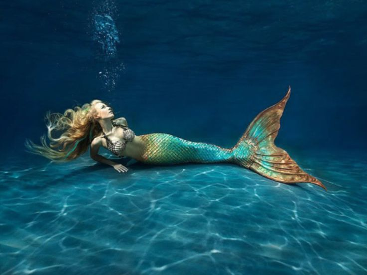 Mertailor.com - can buy realistic mermaid tails .