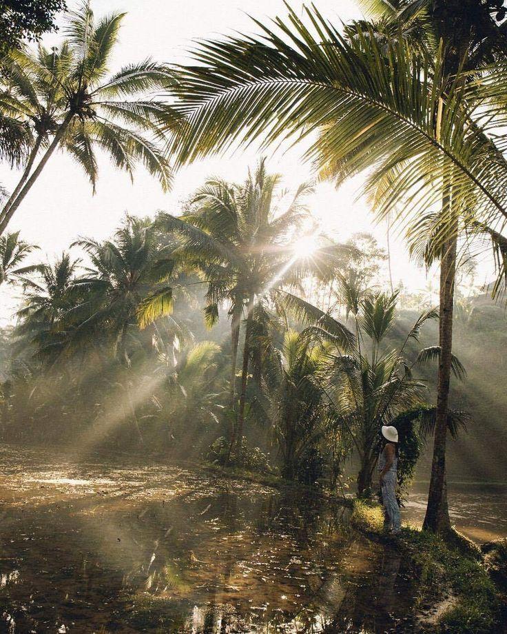Photography   @sutarahady Bali, Indonesia  Canon 5D mark IV + Canon 24-70mm f4   ISO 400   f4   1/1000sec #canon_photos #cpcollectives #horizoncp #xpocreatives