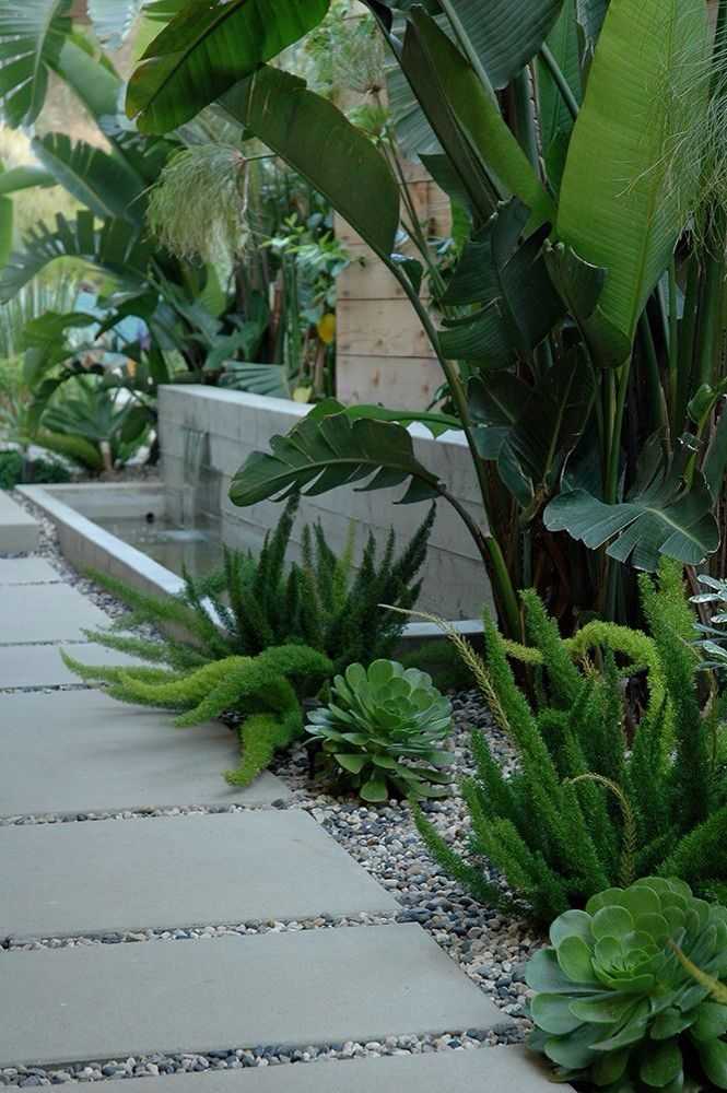 outdoor garden design tropical with large pavers, palm trees, succulents