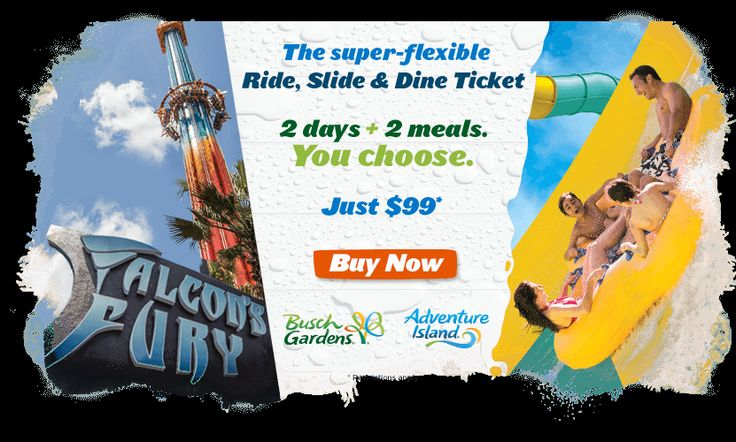 8 Best January 2015 Things To Do Images On Pinterest Disney Worlds Orlando And Orlando Florida
