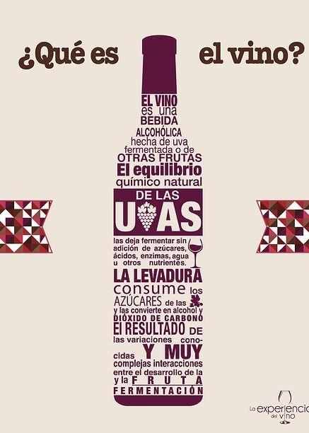 La Experiencia del Vino   Infografías #Vinos #Infografía