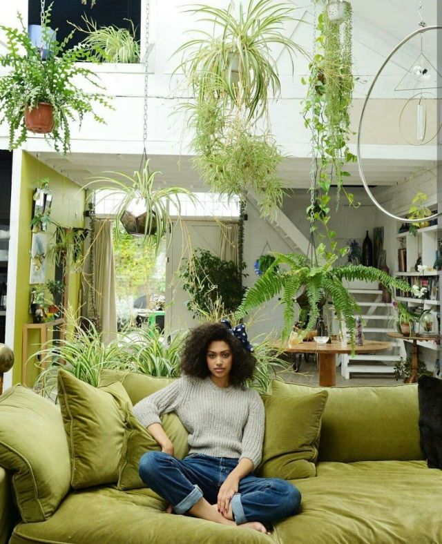 hmmm...who does this remind me of?  photographer Michelle Bobb-Parris  green house