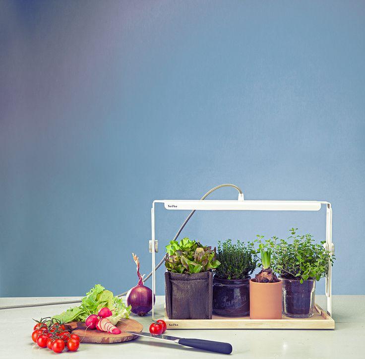 Per chi pensa che la tecnologia abbia un'anima, naturalmente. L'elegante lampada Quadra porta il sole in casa tutto l'anno. Emette una luce colorata, frutto della combinazione di frequenze luminose selezionate per seguire la crescita, dal seme al frutto, di ortaggi, erbe aromatiche, fiori e piante grasse.*