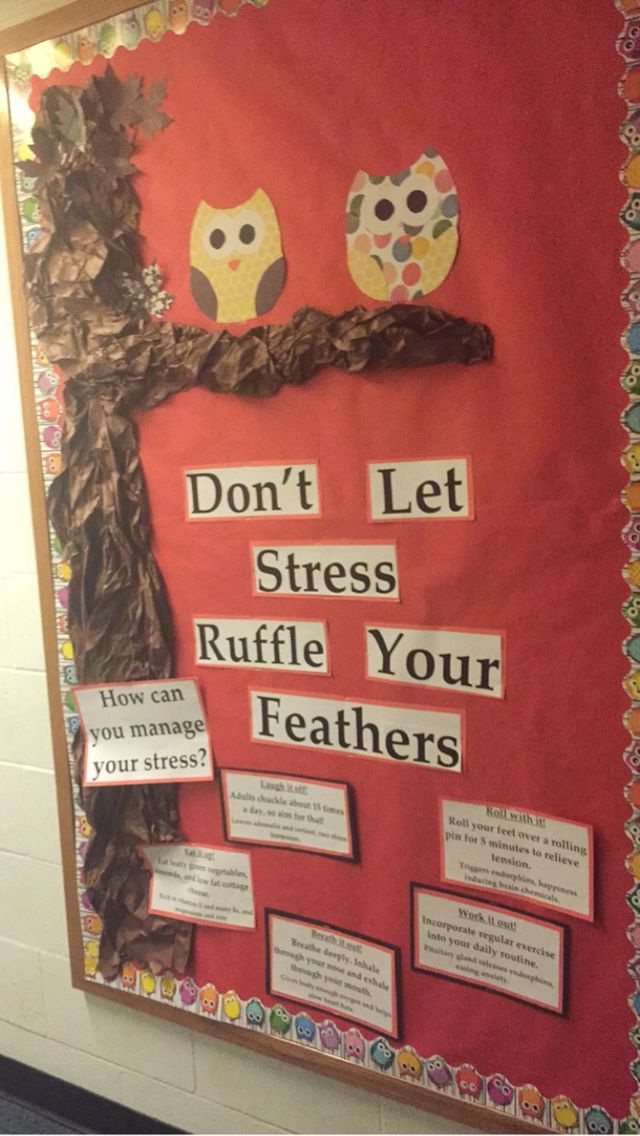 Don't Let Stress Ruffle Your Feathers: tips to manage stress.   Owl theme bulletin board.