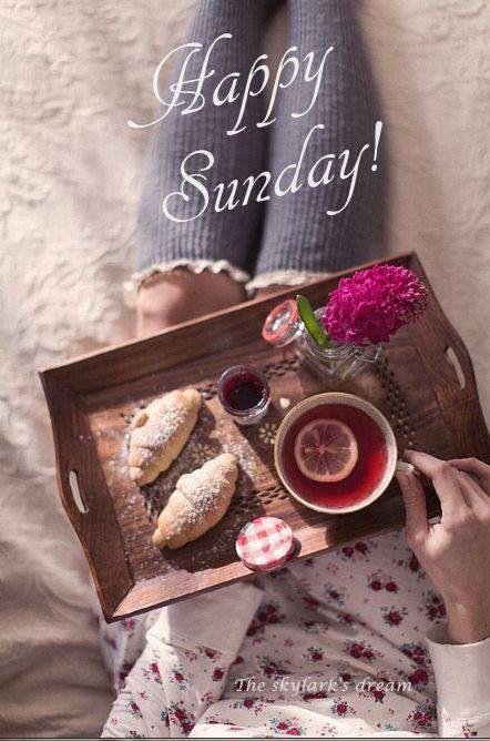 Happy Sunday! ❤️