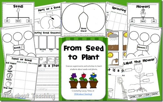 From Seed to Plant-Experiments and activities about seeds and plants: Plant Ideas, Science Ideas, Plants Flowers Seeds, Homeschool Ideas, School Science, Plant Science Experiments, Plant Unit, Plants Seeds