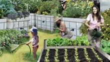 3000Acres   Sustainable Living Festival