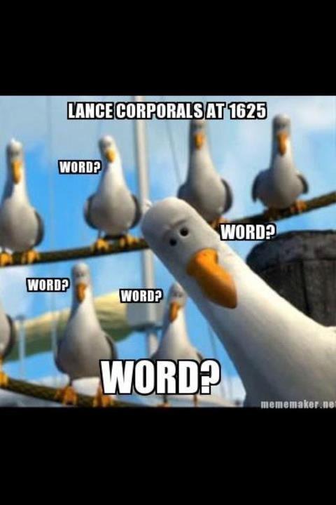 funny - Marine Corps