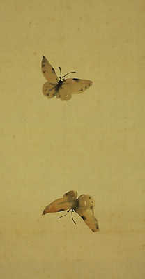 two butterflies ...on one scroll...perfect...