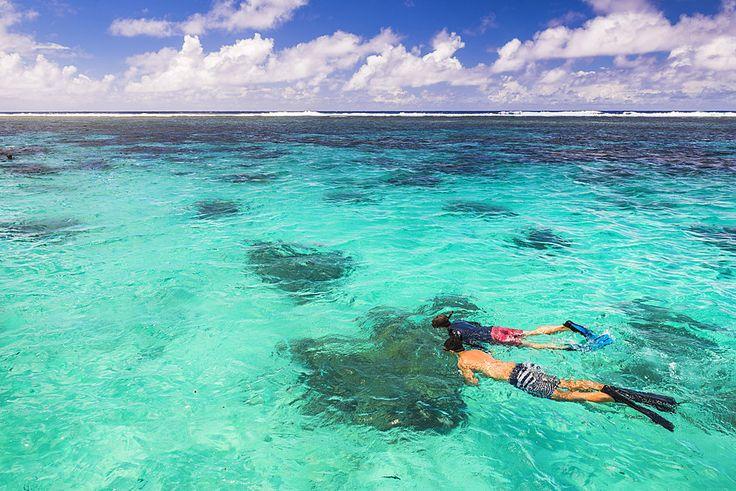 Snorkeling in Muri Lagoon on Captain Tama's Lagoon Cruizes, Rarotonga, Cook Islands