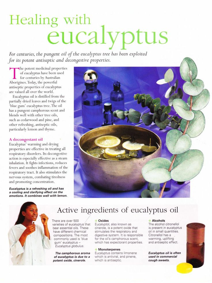 how to make eucalyptus oil diffuser