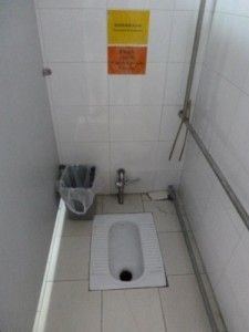 Asian-Style-Squat-Toilet