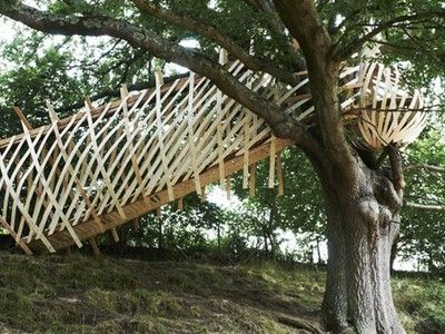 Nest-Like Treehouse Uses Glue-Laminated Timber (Video)