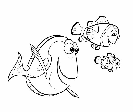 71 best Classroom Ocean Art Projects images on Pinterest Arabesque - fresh coloring pages of nemo and friends