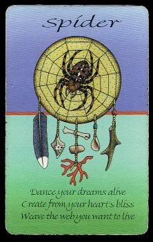 Sacred Earth Healing Arts ™: Animal Medicine - Spider