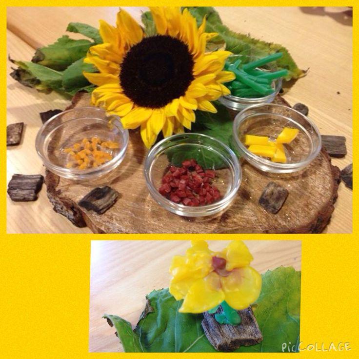 Zonnebloemen van bijenwas