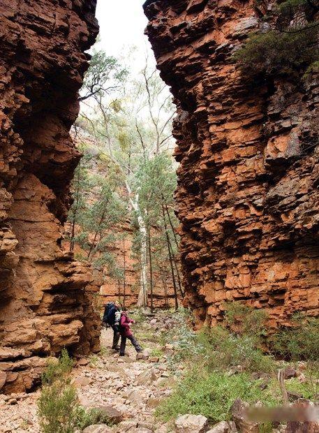 Hidden Gorge, Mt Remarkable National Park, Flinders Ranges, South Australia